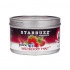Кальянный табак Starbuzz Tobacco Wildberry Mint 100