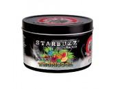 Кальянный табак Starbuzz Tobacco  Tropicool 250